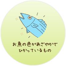 養殖魚の色があざやかで、光っているもの