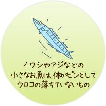 イワシやアジなどの小さな養殖魚は、体がピンとしてウロコの落ちていないもの