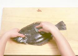 養殖ヒラメ五枚おろし01