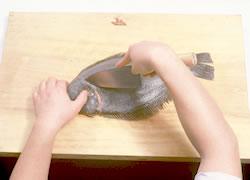 養殖ヒラメ五枚おろし02
