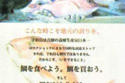 宇和島市鯛PRチラシ