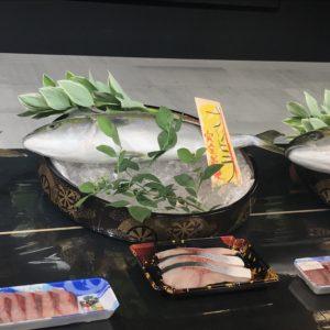 ブリとヒラマサのハイブリッド魚種「ブリヒラ」
